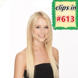 Brazilian virgin silk straight clips in of color 613